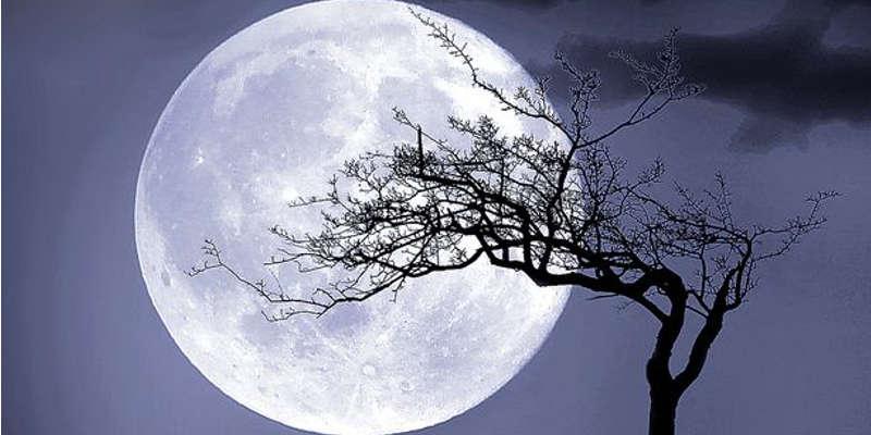 La luna y la piedra de la luna Adularia
